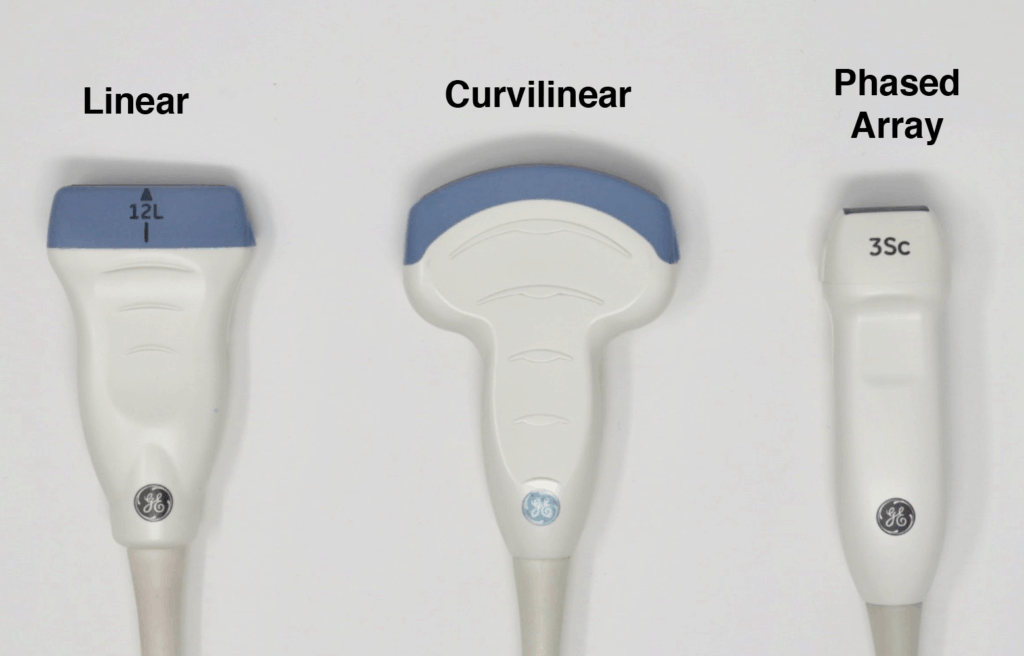 Most Common Ultrasound Probes - Linear, Curvilinear, and Phased Array