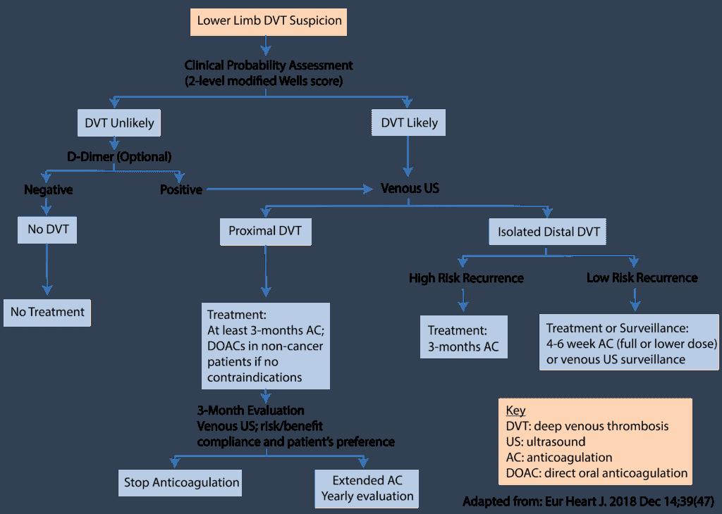 DVT Treatment Algorithm