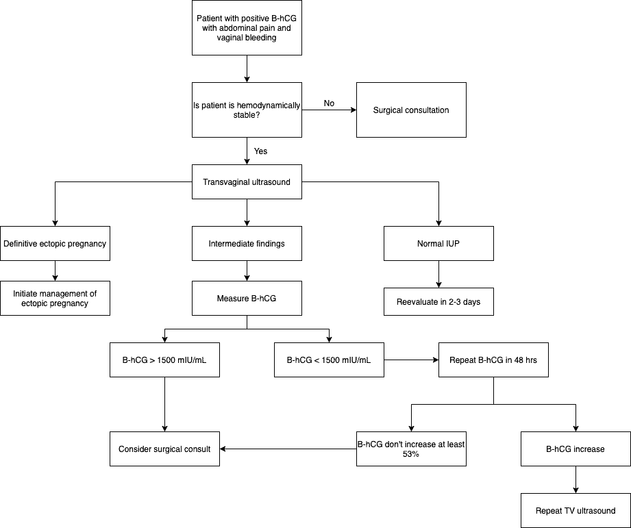 Ectopic Pregnancy Algorithm OB Obstetric Obstetrical Ultrasound